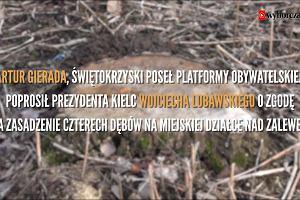 """""""Jak z Barei"""", czyli antyrządowe sadzenie drzew w Kielcach"""