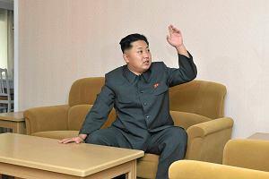 �ledczy ONZ: historie z Korei P�nocnej poruszaj� do �ez
