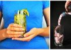 Jak pi� podczas odchudzania, �eby rozkr�ci� metabolizm i zachowa� dobr� form�?