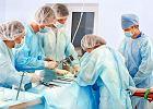 Transplantacje - co, kiedy i od kogo możemy przeszczepić?