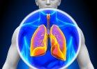 Jak pracuj� ludzkie p�uca i po co oddychamy