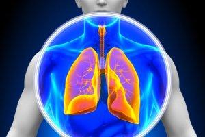 Jak pracują ludzkie płuca i po co oddychamy