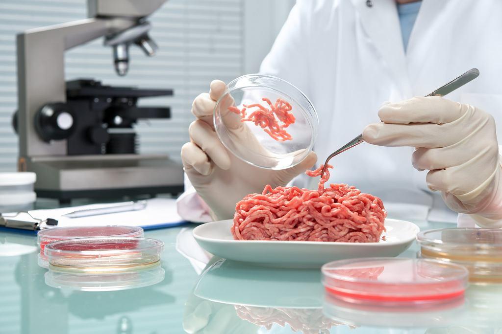 Zagranicą naukowcom już kilkakrotnie udało się wyhodować mięso w... laboratorium (fot. AlexRaths / iStockphoto.com)