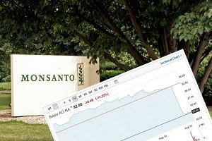 Bayer mocno traci na giełdzie. To reakcja na wyrok ws. Monsanto i oskarżeń o związek glifosatu z rakiem