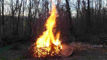 Ognisko (zdjęcie ilustracyjne)