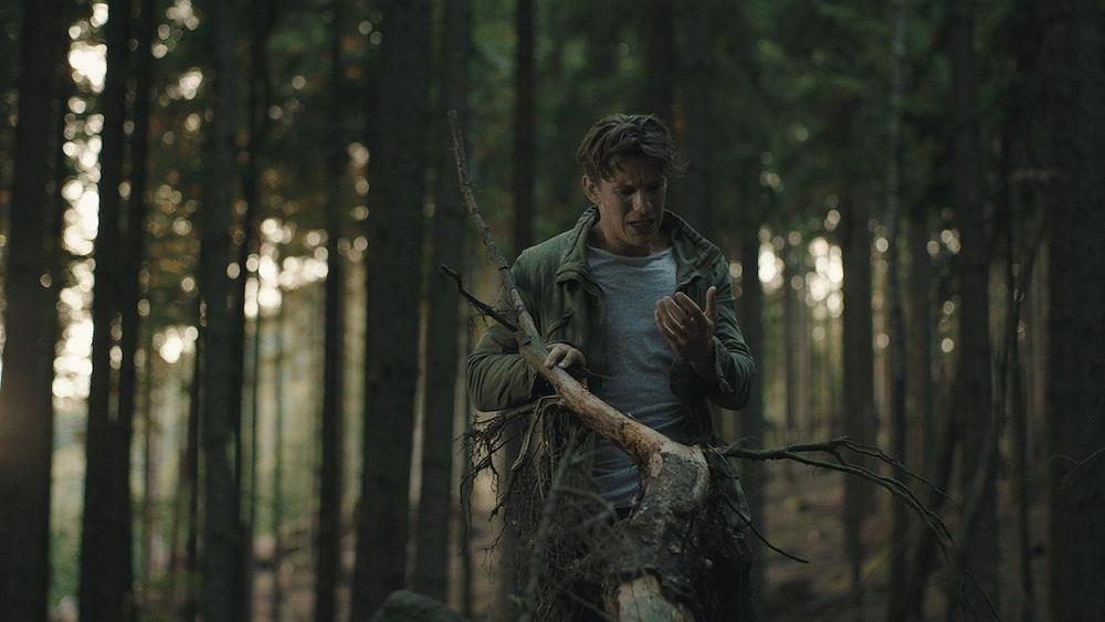 Kadr z filmu 'Redwood' / Materiały promocyjne