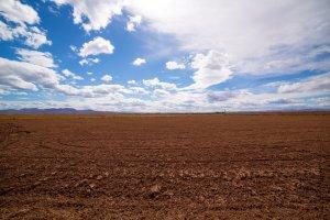 Grunty rolne na celowników inwestorów