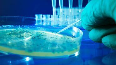 Bakterie przenoszone na dłoniach mogą wywołać m.in. ostre zatrucia układu pokarmowego oraz sepsę
