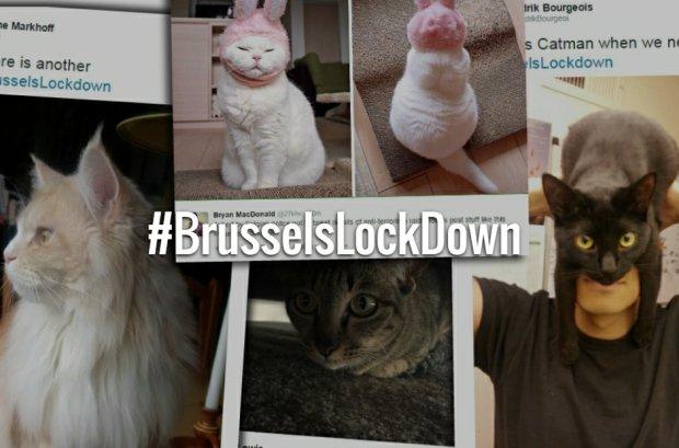 Policja prosi, by nie podawać szczegółów akcji w Brukseli. Co robią Belgowie? Świetna i błyskawiczna akcja