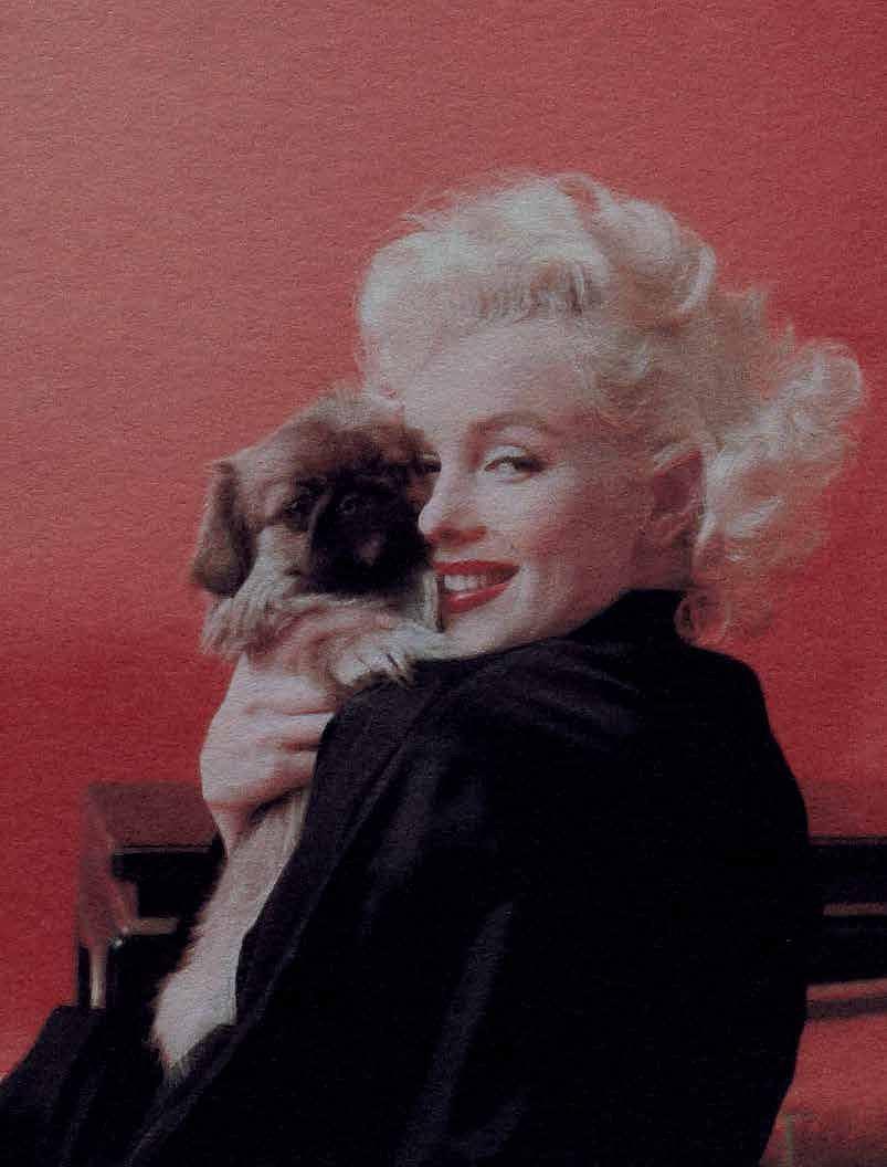 Zdjęcie numer 4 w galerii - Czemu władza wydała miliony na zdjęcia Marilyn Monroe? Teraz tłumaczą to udziałem jej plakatów w przełomie 1989 r.