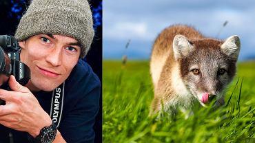 Z prawej młody piesiec, czyli lis polarny, a z lewej autor fotografii - Marcin Dobas