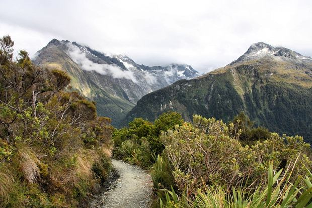 Szlak Routeburn, Nowa Zelandia / fot. Shutterstock