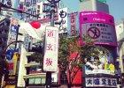 Polacy w Japonii. ''Nawet je�li mówisz p�ynnie po japo�sku, jeste� obcy''