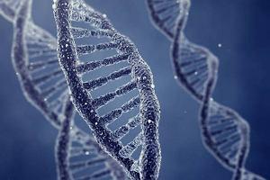 BRCA 1 - gen powodujący raka piersi lub jajnika?
