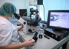 Ministerstwo Zdrowia: prawdopodobnie w lutym rz�d zajmie si� projektem ws. in vitro