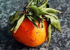 Pomarańcza - cytrusowa królowa. Co oprócz witaminy C kryją w sobie pomarańcze?