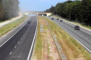 Ekolodzy zn�w oprotestuj� budow� drogi S7. Bo projekt jest ten sam