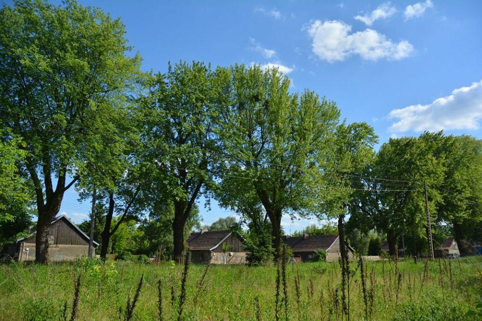 Domy na Świerczewie