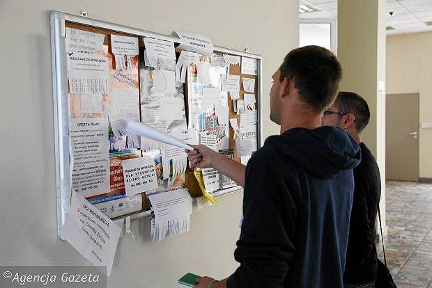 Publikacja ogłoszeń przetargowych - przepisy przejściowe Pzp