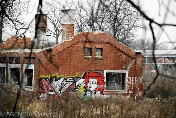 Al Witosa 18 Lublin