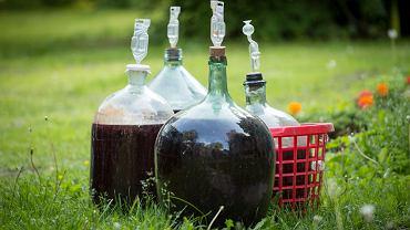 Domowe wino owocowe