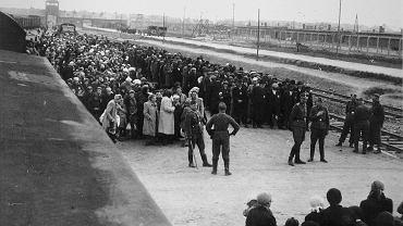 Selekcja na Judenrampe. To tutaj, w połowie drogi między obozami Auschwitz I i Auschwitz II - Birkenau, przywiezieni pociągiem Żydzi byli ustawiani w dwóch kolumnach. Po lewej - najczęściej kobiety, dzieci oraz ludzie starsi - szli prosto do komory gazowej, po prawej - mężczyźni uznani za zdolnych do pracy. Selekcji podlegali wyłącznie Żydzi. Od wiosny 1944 r. pociągi wjeżdżały bezpośrednio na teren obozu Birkenau, przez co uśmiercanie zostało przyspieszone. Oficer w furażerce po prawej stronie trzymający papierosa to Josef Mengele.