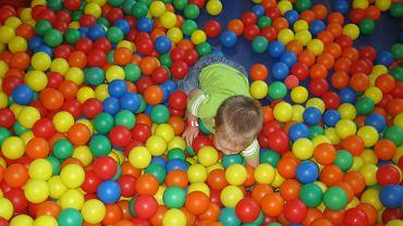 Dlaczego sale zabaw nazywane są 'ospowiskami'?
