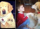 Niewidomy pies bohaterem dzieci i seniorów. Na jego widok uśmiechają się ci, którzy nie robili tego od lat