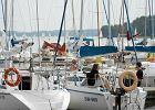 T�umy �eglarzy i eutrofizacja: Wielkim Jeziorom Mazurskim grozi zamieranie