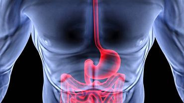 Gastroskopia to jedno z najskuteczniejszych badań pozwalających ocenić stan układu pokarmowego