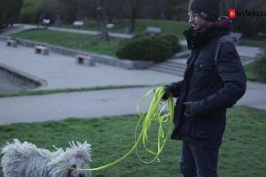 Jak sobie radzić z psem w mieście [WIDEO]