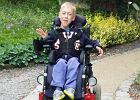 9-letni Antek triumfuje! Chłopiec może wjechać do szkoły na wózku