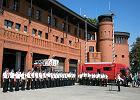 Strażacy z Wielkopolski nagrodzeni przez ministerstwo za akcję gaszenia pożarów w Szwecji
