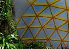Gdyńskie hospicjum chce zbudować tropikalny ogród. Możesz pomóc
