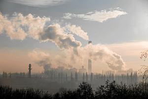 Wiadomości o złym stanie powietrza wracają do nas jak bumerang. Jak zadbać o siebie w czasie, gdy toksyczne substancje psują jakość naszego życia?