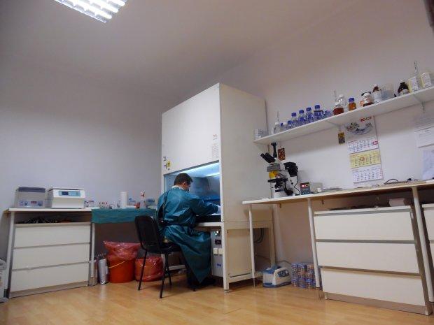 laboratorium regenvet