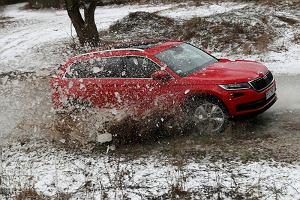 Testowaliśmy SUV-a, na którego czekała cała branża. Dlaczego Polacy go kupią?