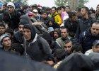 Imigranci w obozie w Chorwacji
