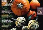 Listopadowy numer magazynu Kuchnia ju� w sprzeda�y!
