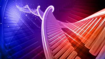 Ta rzadka choroba genetyczna wywołana jest mutacją jednego z genów supresorowych