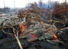 Hawajczycy w niebezpiecze�stwie. Lawa pokrywa Wielk� Wysp�