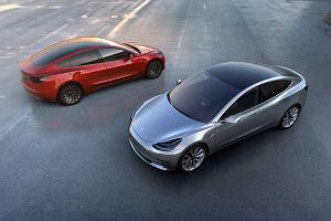 Zobacz, jak jeździ najnowsza Tesla. Podekscytowany Elon Musk dzieli się nagraniem wideo