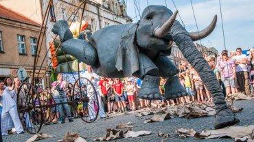 Uliczny Festiwal Osobliwości w Szamotułach