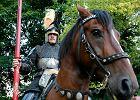 Listonosz z Zawiercia od 12 lat dowodzi polsk� konnic� pod Grunwaldem