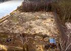 """Wiceburmistrz wyciął drzewa z obszaru """"Natura 2000"""". Twierdzi, że umożliwiła to """"Lex Szyszko"""""""