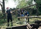 Kolejka po drewno z huraganu. Będzie tylko dla największych producentów?