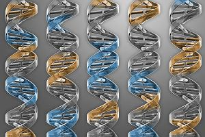 Drożdże z jedną trzecią sztucznych genów! Już blisko stworzenia w pełni syntetycznego życia