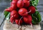 Rzodkiewka kalorie - ile kcal ma rzodkiewka?