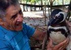 Jak cz�owiek z pingwinem