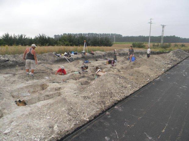 Znale�li 1650 grob�w na budowie drogi. Ponowny pogrzeb